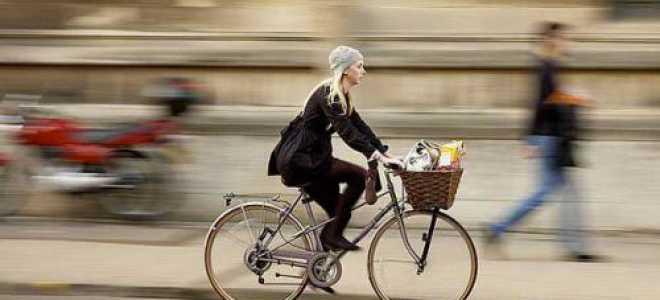 Как правильно выбрать велосипед новичку